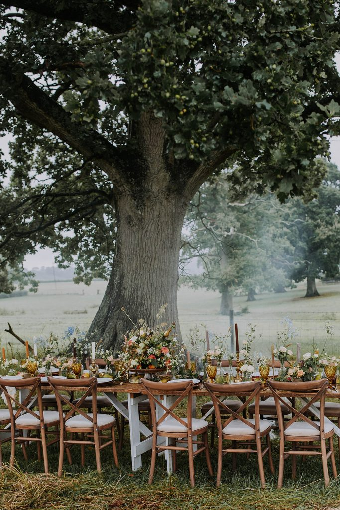 wedding-reception-under-a-tree